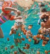 A Maldivian Masterstroke where lush life thrives