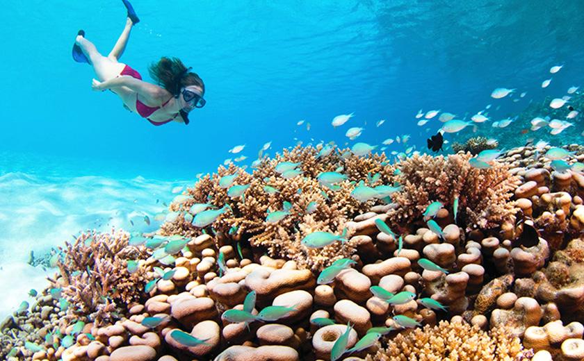 Exploring marine world - Soneva Fushi