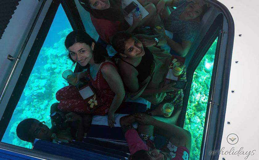 Penguin - Submarine ride